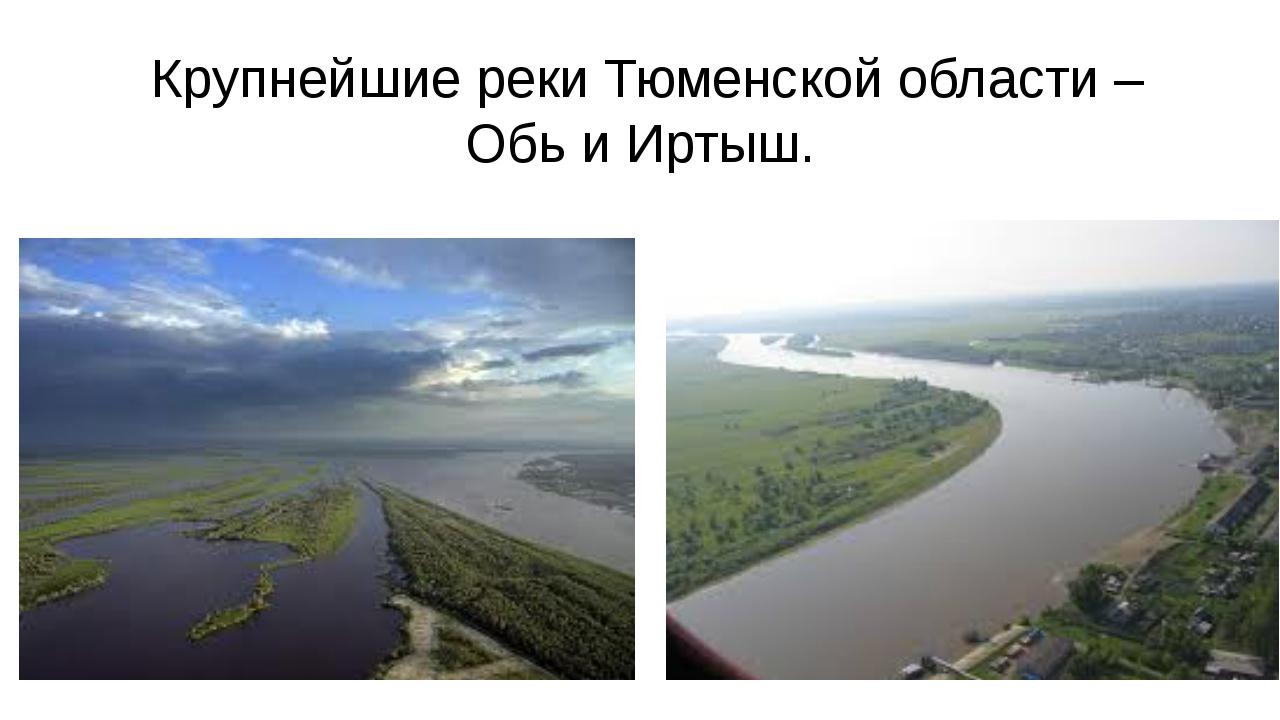 Крупнейшие реки Тюменской области – Обь и Иртыш.