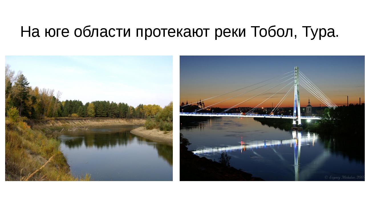 На юге области протекают реки Тобол, Тура.