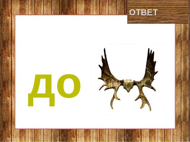 дорога ОТВЕТ до