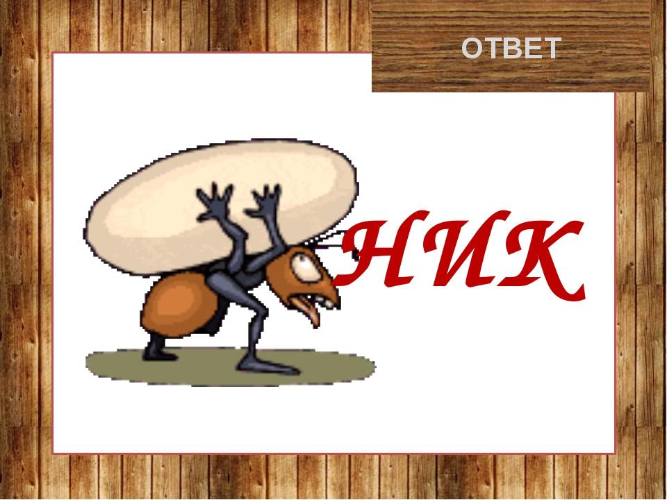 муравейник ОТВЕТ НИК