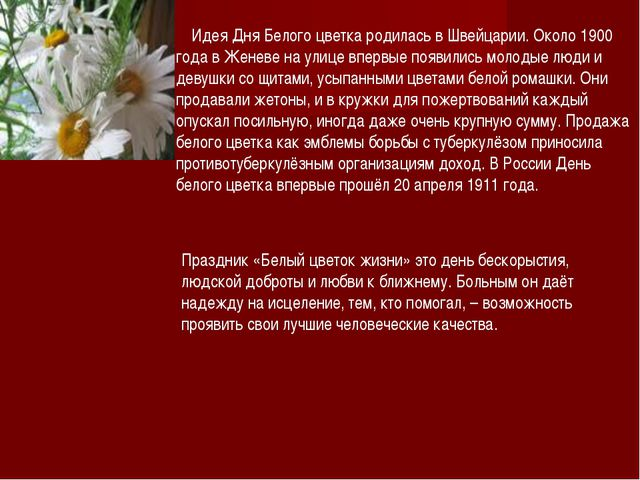 Идея Дня Белого цветка родилась в Швейцарии. Около 1900 года в Женеве на...