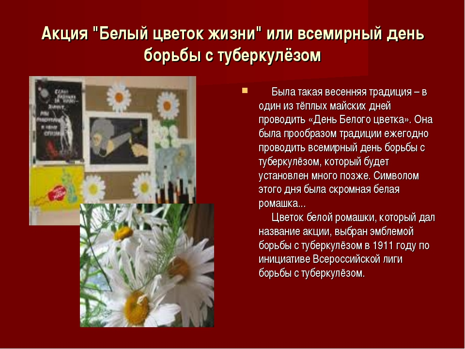 """Акция """"Белый цветок жизни"""" или всемирный день борьбы с туберкулёзом  Была..."""