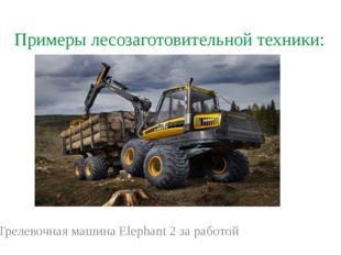 Примеры лесозаготовительной техники: Рис. 2. Трелевочная машина Elephant 2 за