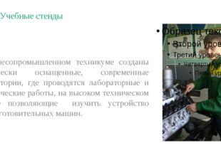 Учебные стенды В лесопромышленном техникуме созданы технически оснащенные, со