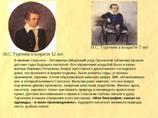 И.С. Тургенев в возрасте 12 лет. И.С. Тургенев в возрасте 7 лет В имении Спас