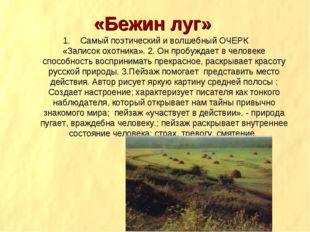 «Бежин луг» Самый поэтический и волшебный ОЧЕРК «Записок охотника». 2. Он про