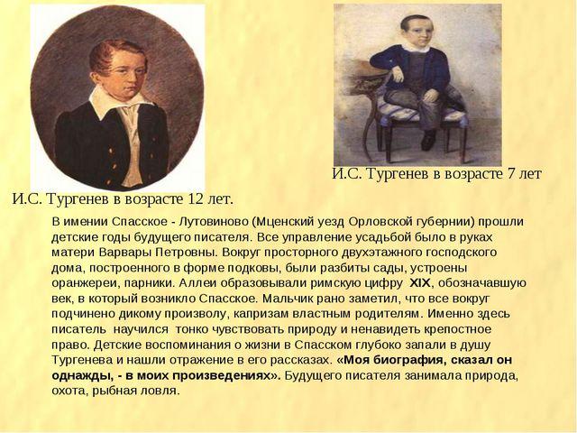 И.С. Тургенев в возрасте 12 лет. И.С. Тургенев в возрасте 7 лет В имении Спас...