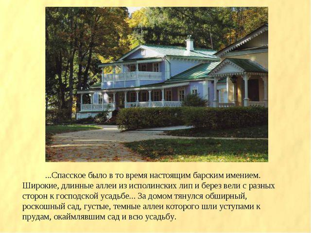 ...Спасское было в то время настоящим барским имением. Широкие, длинные аллеи...