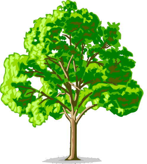 Дерево семьи рисунок для детей