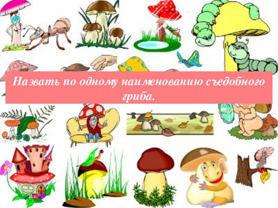 Назвать по одному наименованию съедобного гриба.