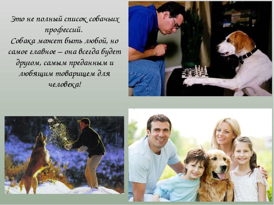 Это не полный список собачьих профессий. Собака может быть любой, но самое г...