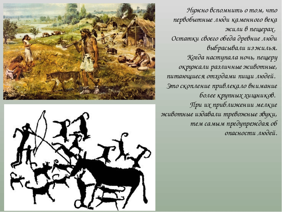 Нужно вспомнить о том, что первобытные люди каменного века жили в пещерах. Ос...