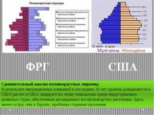 ФРГ Сравнительный анализ половозрастных пирамид В результате миграционных вли