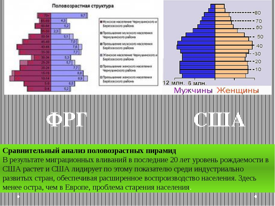 ФРГ Сравнительный анализ половозрастных пирамид В результате миграционных вли...