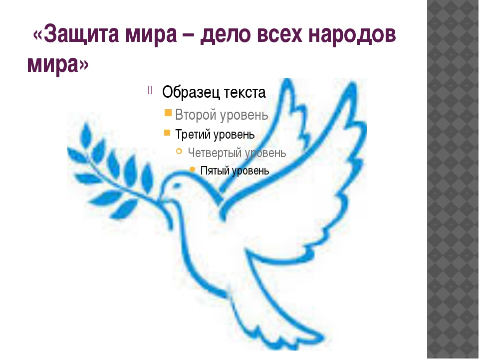 «Защита мира – дело всех народов мира»
