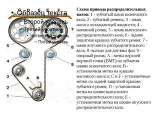 Схема привода распределительных валов: 1 - зубчатый шкив коленчатого вала; 2