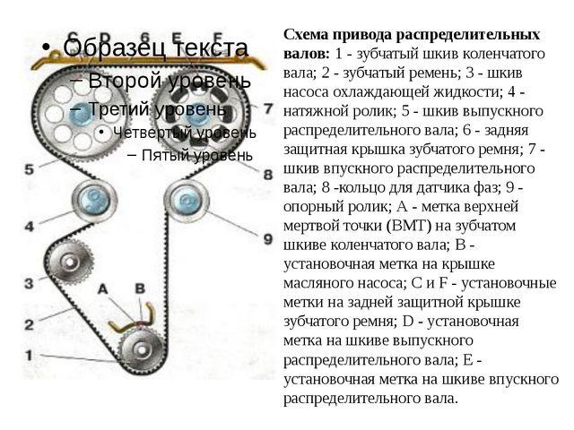 Схема привода распределительных валов: 1 - зубчатый шкив коленчатого вала; 2...