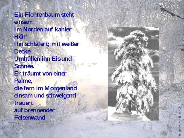 Ein Fichtenbaum steht einsam Im Norden auf kahler Höh' Ihn schläfert; mit wei...