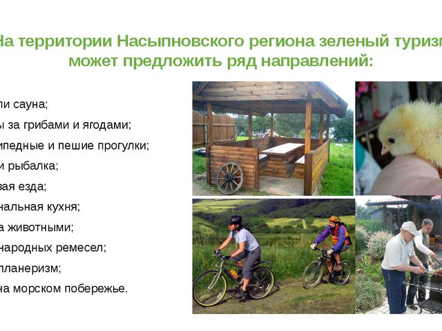 На территории Насыпновского региона зеленый туризм может предложить ряд напра...