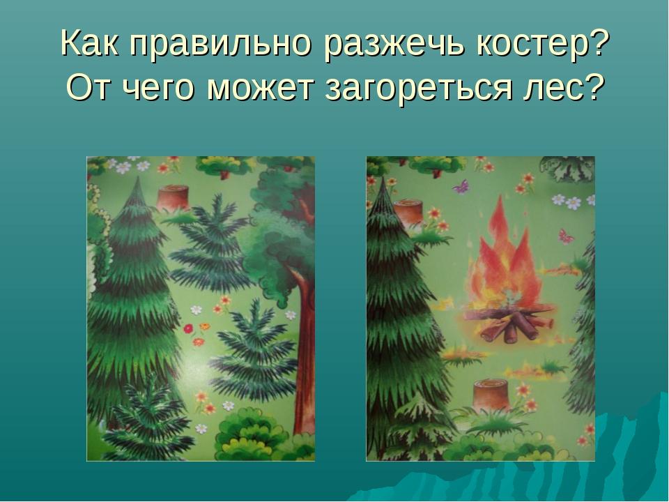 Как правильно разжечь костер? От чего может загореться лес?
