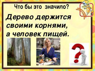 Что бы это значило? Дерево держится своими корнями, а человек пищей.