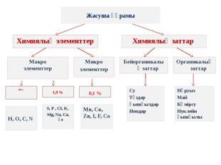 Жасуша құрамы Химиялық элементтер Химиялық заттар Макро элементтер 1,9 % Микр