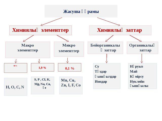 Жасуша құрамы Химиялық элементтер Химиялық заттар Макро элементтер 1,9 % Микр...
