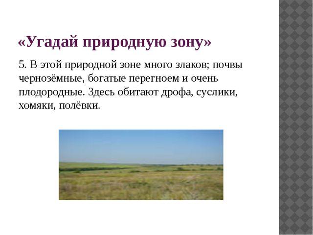 «Угадай природную зону» 5. В этой природной зоне много злаков; почвы чернозём...