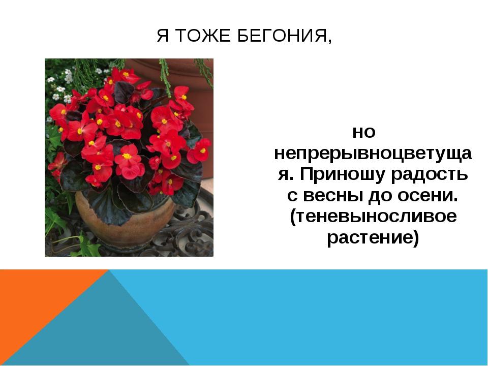 но непрерывноцветущая. Приношу радость с весны до осени.(теневыносливое расте...