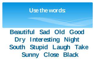 Use the words: Beautiful Sad Old Good Dry Interesting Night South Stupid Laug