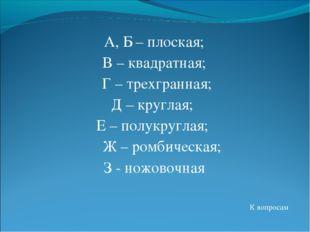А, Б – плоская; В – квадратная; Г – трехгранная; Д – круглая; Е – полукругла