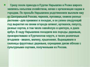 Сразу после приезда в Курган Нарышкин и Розен широко занялись сельским хозяй