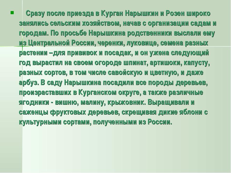 Сразу после приезда в Курган Нарышкин и Розен широко занялись сельским хозяй...