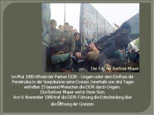 Der Fall der Berliner Mauer Im Mai 1989 öffnete der Partner DDR - Ungarn unte