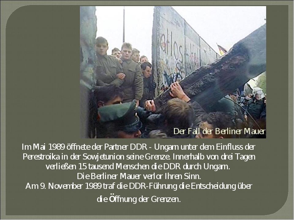 Der Fall der Berliner Mauer Im Mai 1989 öffnete der Partner DDR - Ungarn unte...