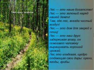 Лес — это наше богатство! Лес — это зеленый наряд нашей Земли! Там, где лес,