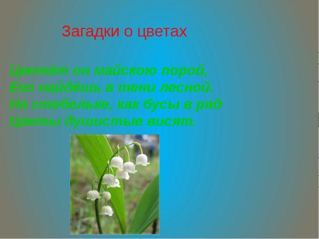 Загадки о цветах Цветёт он майскою порой, Его найдёшь в тени лесной. На стебе...