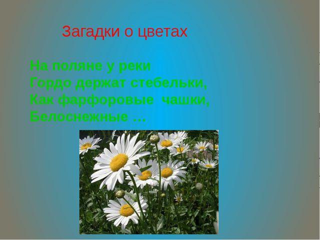 Загадки о цветах На поляне у реки Гордо держат стебельки, Как фарфоровые чашк...