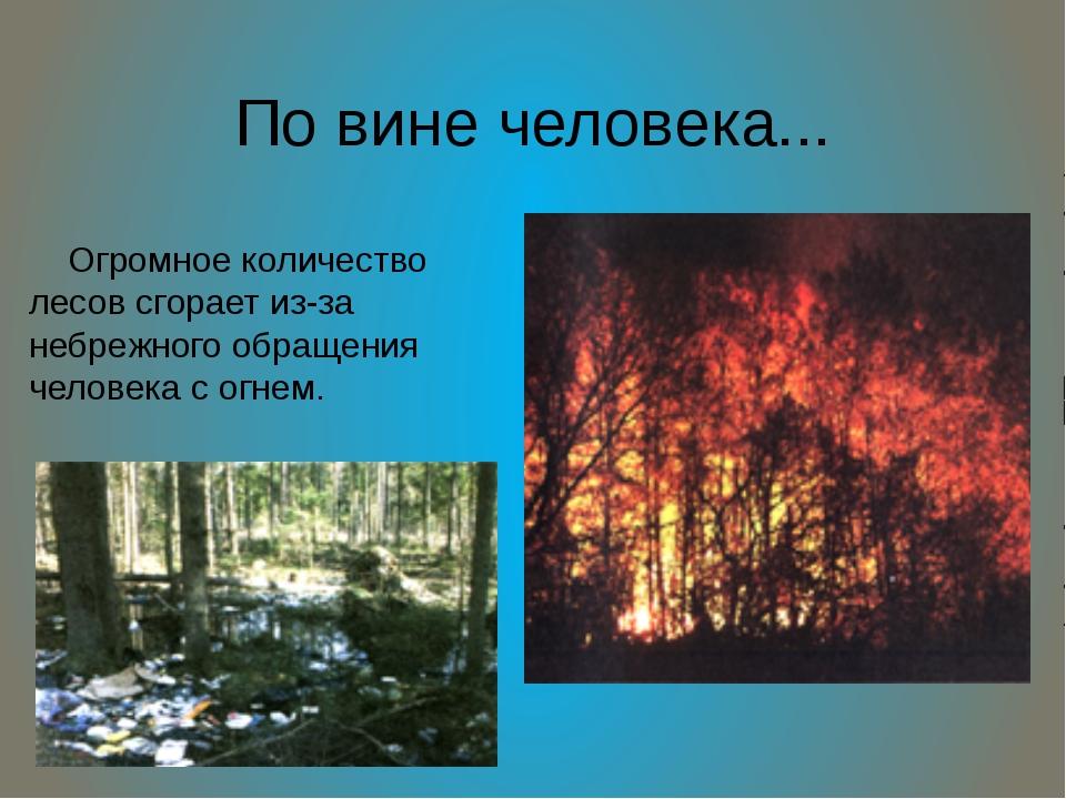 По вине человека... Огромное количество лесов сгорает из-за небрежного обраще...