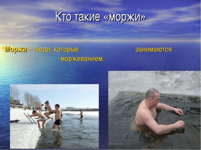 Кто такие «моржи» Моржи – люди, которые занимаются моржеванием.