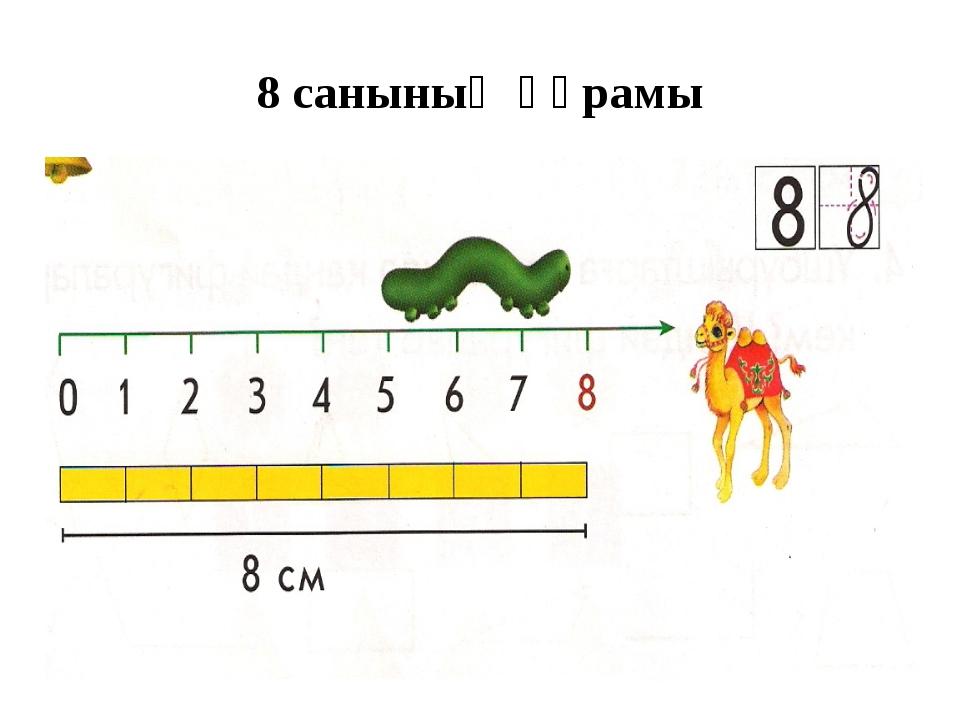 8 санының құрамы