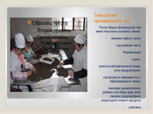 Технология производства чая После сборки производство чая имеет несколько осн