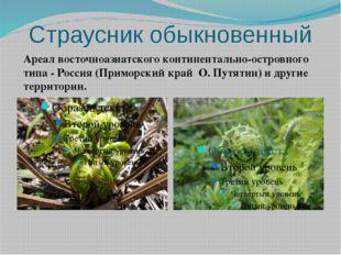 Страусник обыкновенный Ареал восточноазиатского континентально-островного тип