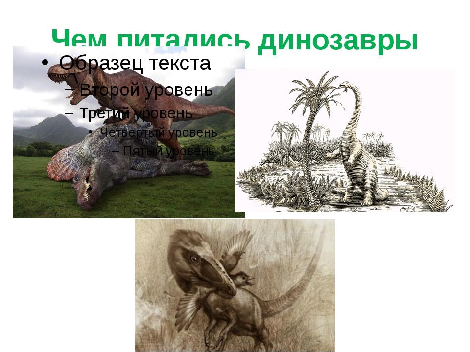Чем питались динозавры