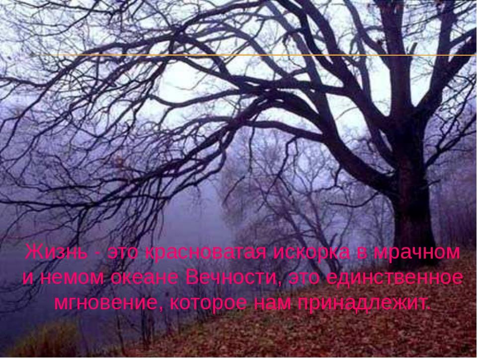Жизнь - это красноватая искорка в мрачном и немом океане Вечности, это единс...