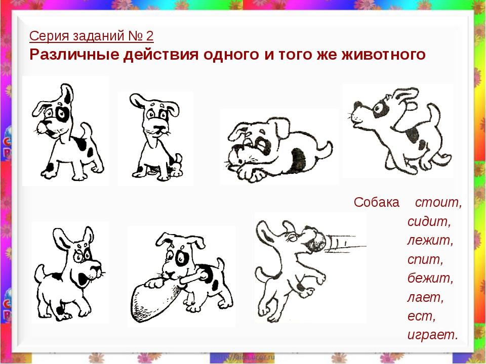 Серия заданий № 2 Различные действия одного и того же животного Собака стоит,...