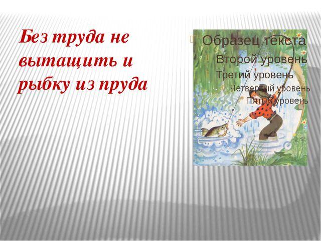 Без труда не вытащить и рыбку из пруда