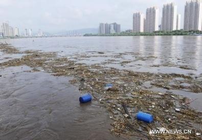 Китай забирает сибирские реки