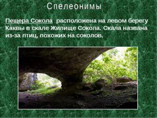 Пещера Сокола расположена на левом берегу Каквы в скале Жилище Сокола. Скала