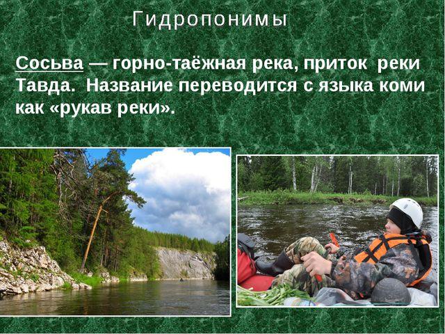 Сосьва— горно-таёжная река, приток реки Тавда. Название переводится с языка...